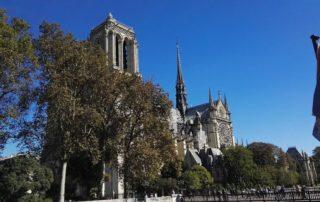 Notre-Dame, pohled z jižní strany